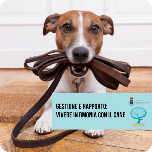 cane laterale